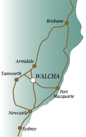 To Walcha